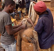The new era of minerals development in Africa