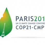 The role of CCS (Carbon dioxide Capture and Storage) in mitigating climate change